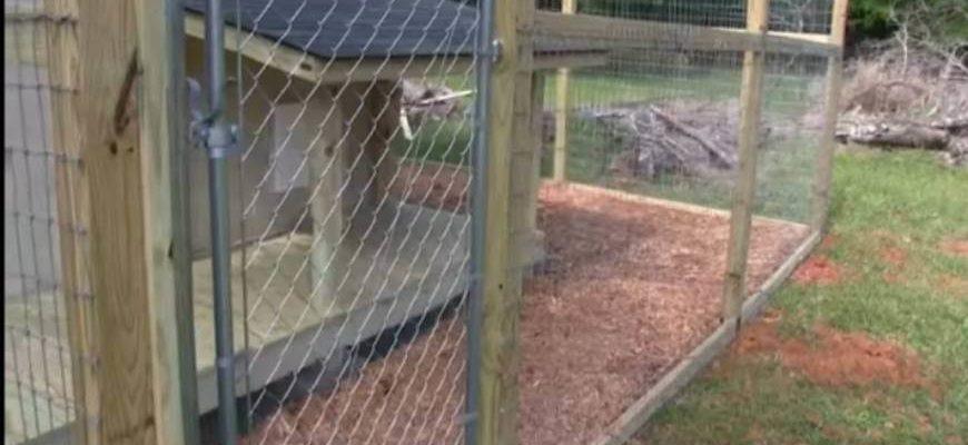 Вольер для лабрадора в загородном доме